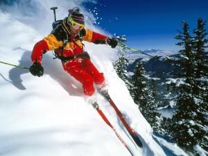 snow_sports_24