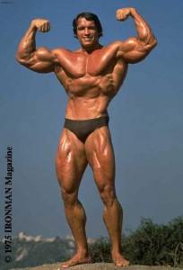 арнольд шварценеггер + Arnold Schwarzenegger 8